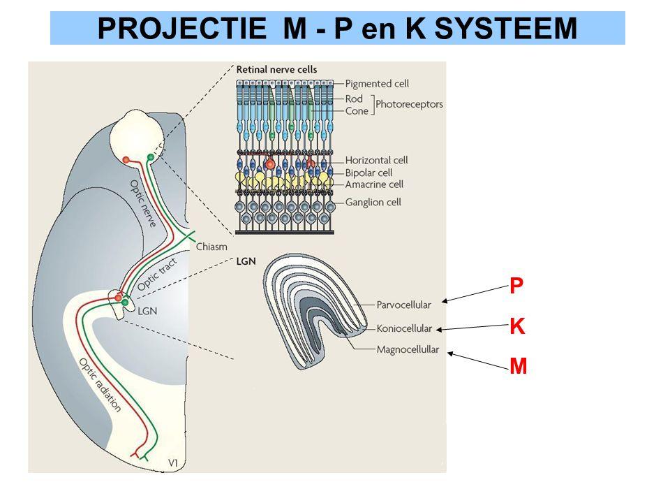 PROJECTIE M - P en K SYSTEEM