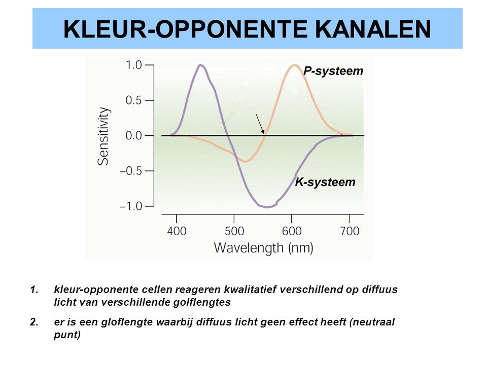 KLEUR-OPPONENTE KANALEN