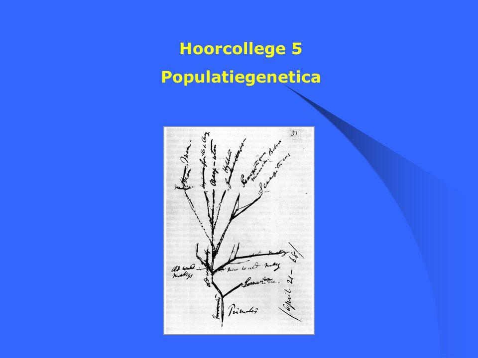 Hoorcollege 5 Populatiegenetica