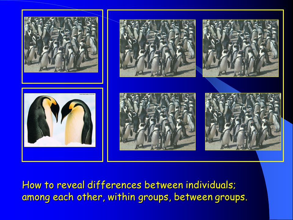 How to reveal differences between individuals;