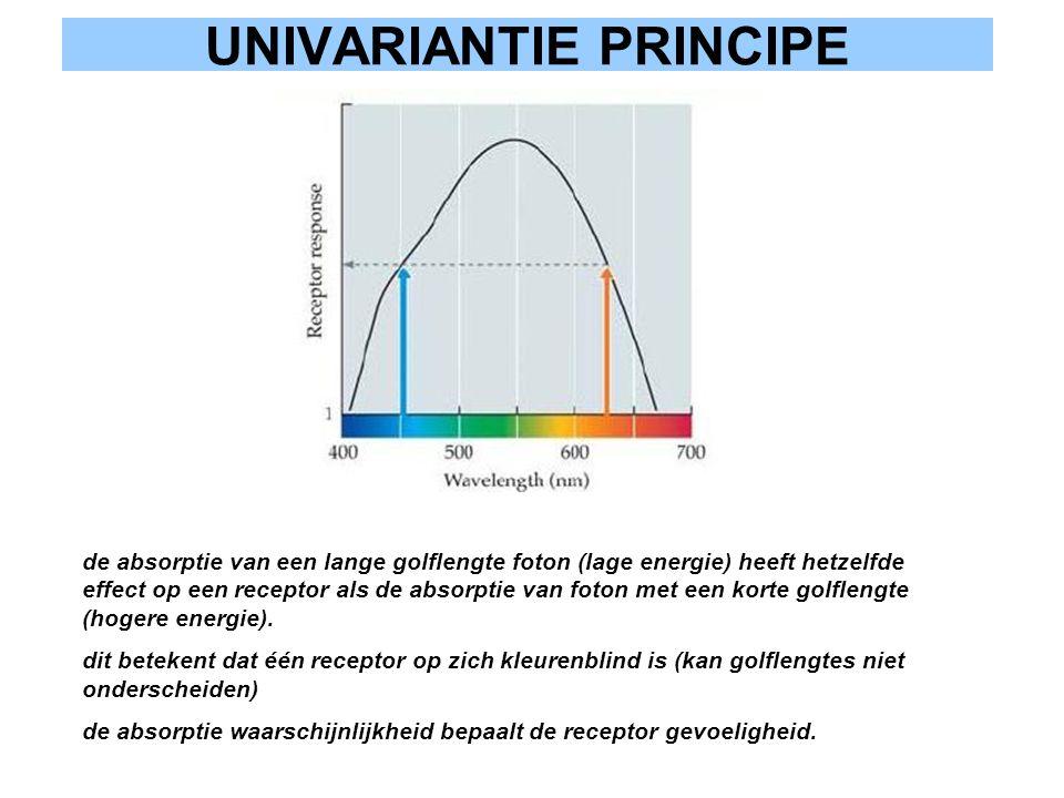 UNIVARIANTIE PRINCIPE