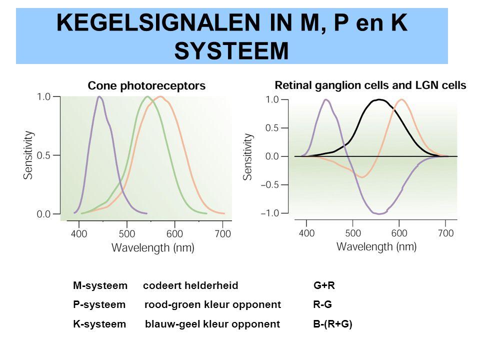 KEGELSIGNALEN IN M, P en K SYSTEEM
