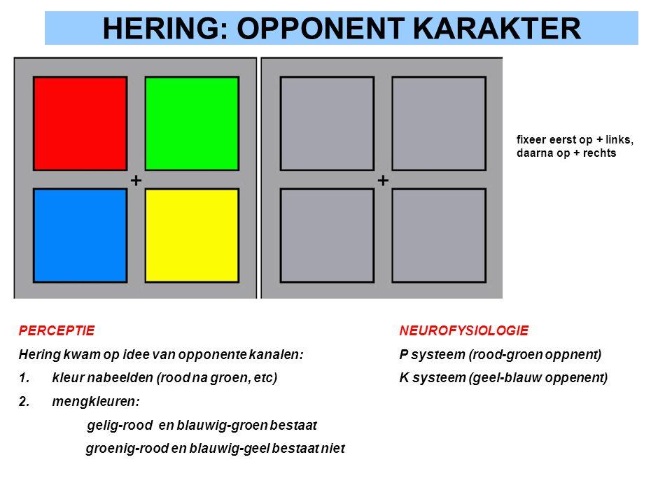 HERING: OPPONENT KARAKTER
