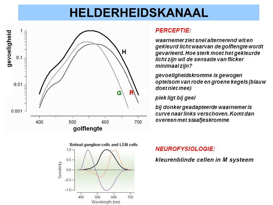 HELDERHEIDSKANAAL PERCEPTIE: NEUROFYSIOLOGIE: