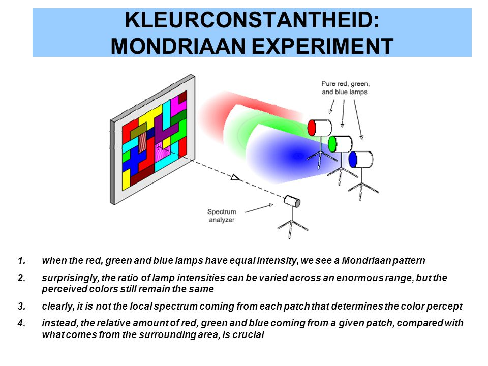 KLEURCONSTANTHEID: MONDRIAAN EXPERIMENT