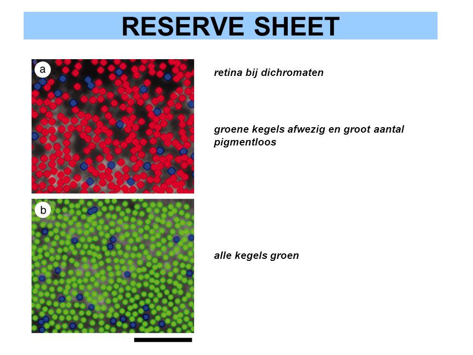 RESERVE SHEET retina bij dichromaten