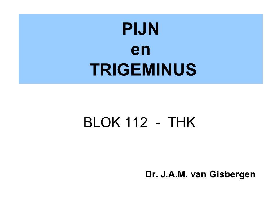 PIJN en TRIGEMINUS BLOK 112 - THK Dr. J.A.M. van Gisbergen