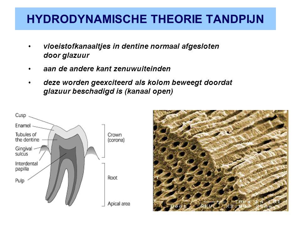 HYDRODYNAMISCHE THEORIE TANDPIJN