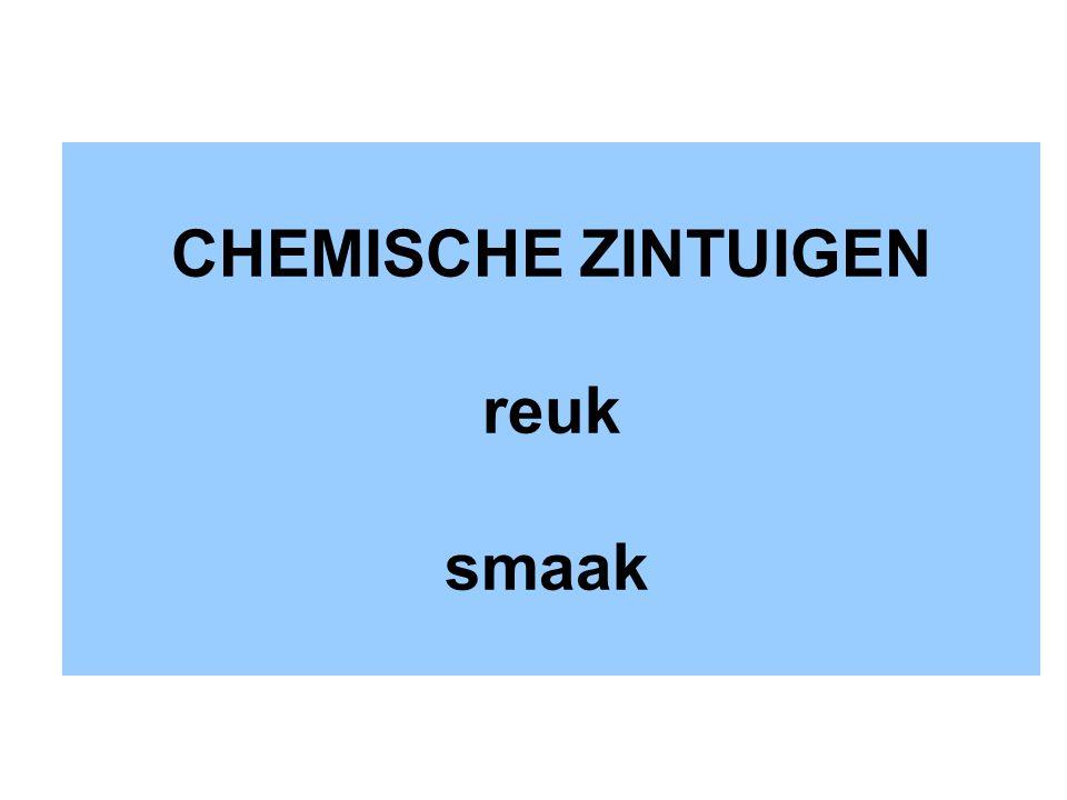 CHEMISCHE ZINTUIGEN reuk smaak