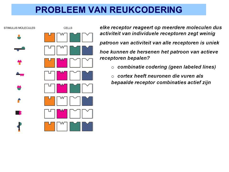 PROBLEEM VAN REUKCODERING