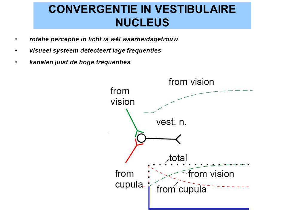 CONVERGENTIE IN VESTIBULAIRE NUCLEUS