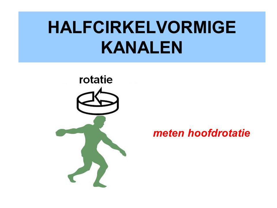 HALFCIRKELVORMIGE KANALEN