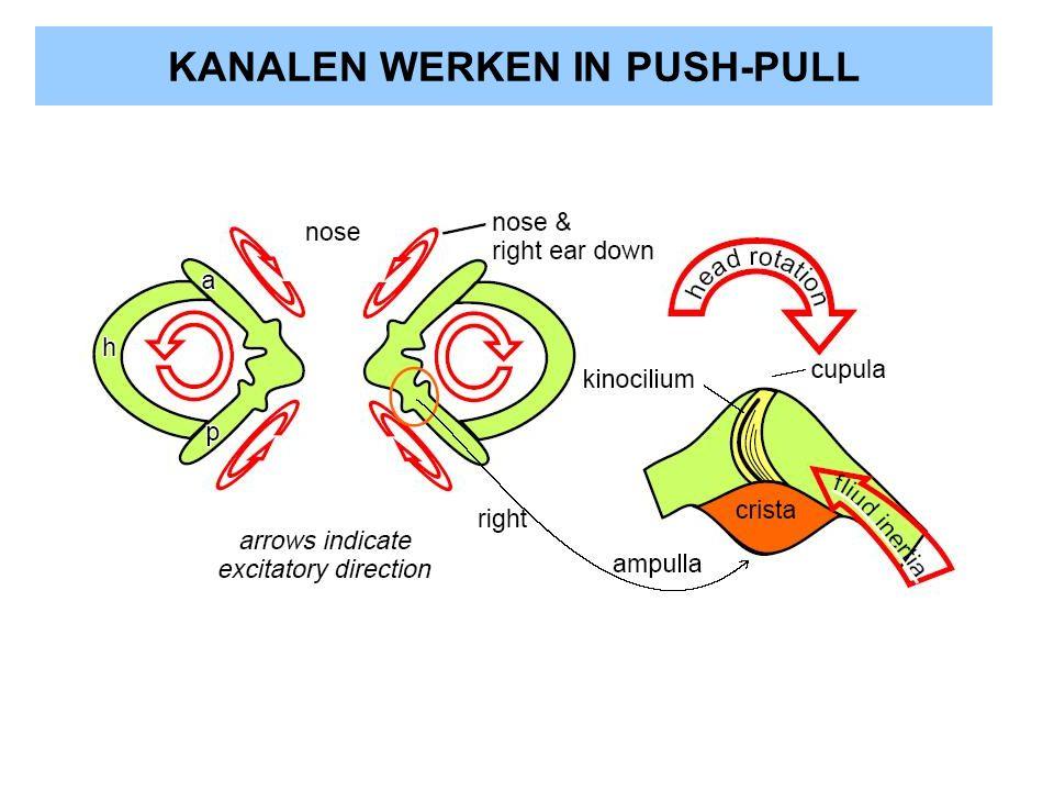 KANALEN WERKEN IN PUSH-PULL