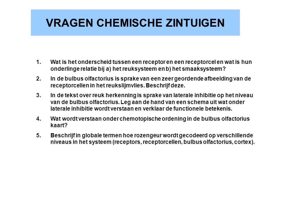 VRAGEN CHEMISCHE ZINTUIGEN
