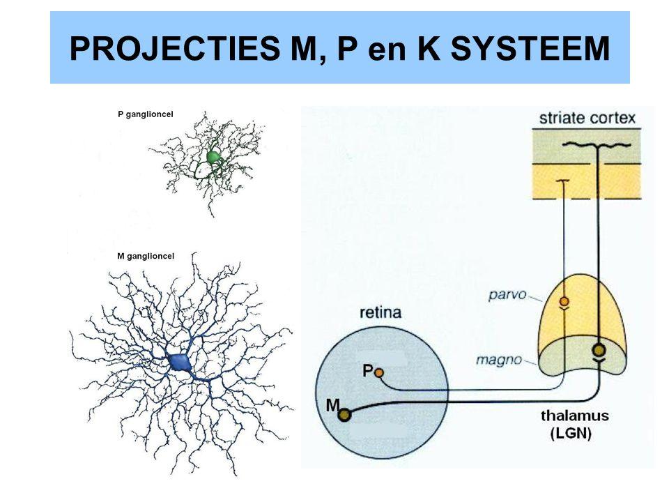 PROJECTIES M, P en K SYSTEEM