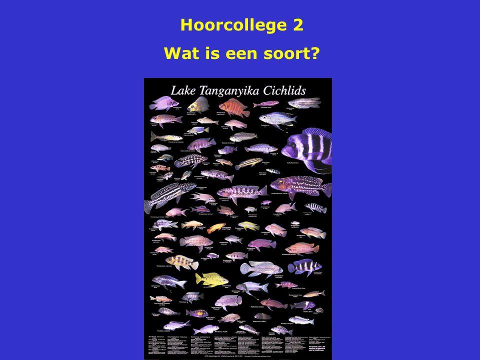 Hoorcollege 2 Wat is een soort