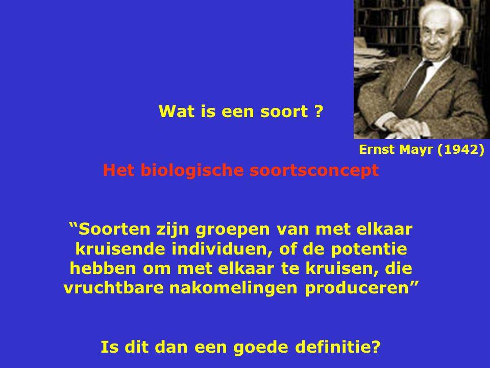 Het biologische soortsconcept Is dit dan een goede definitie
