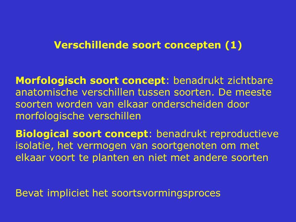 Verschillende soort concepten (1)