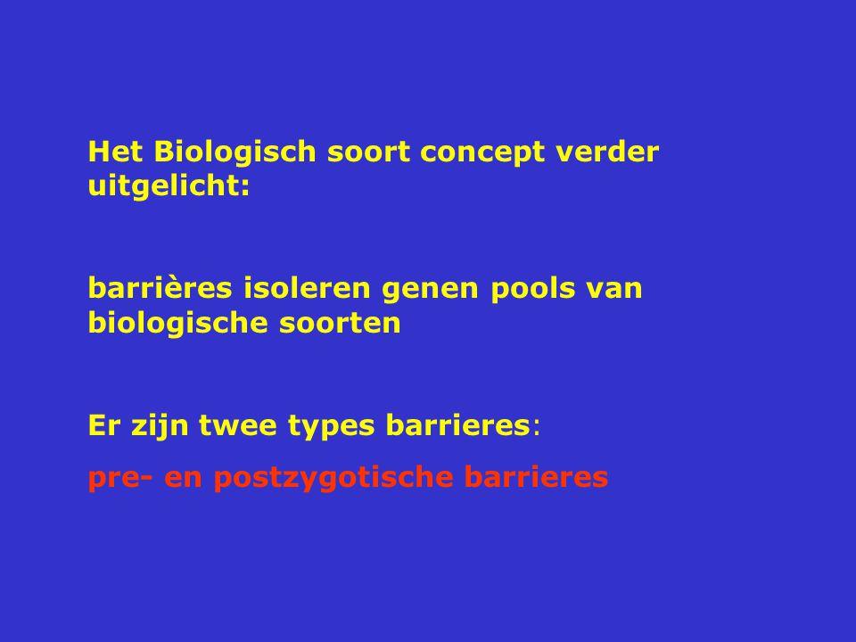 Het Biologisch soort concept verder uitgelicht: