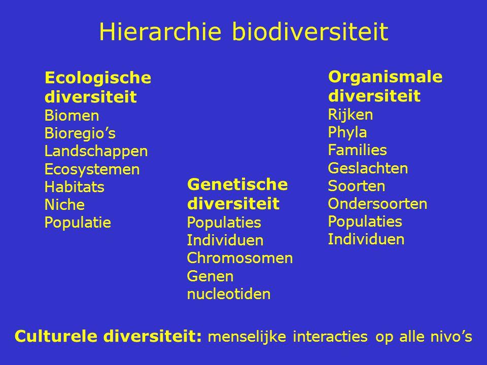 Hierarchie biodiversiteit