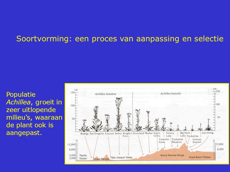 Soortvorming: een proces van aanpassing en selectie