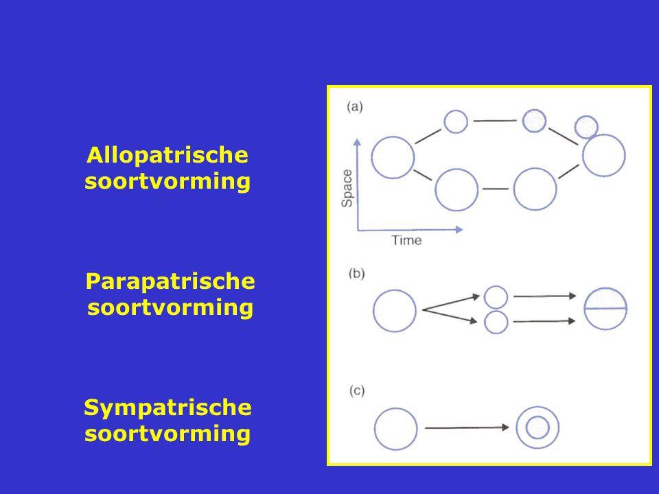 Allopatrische soortvorming