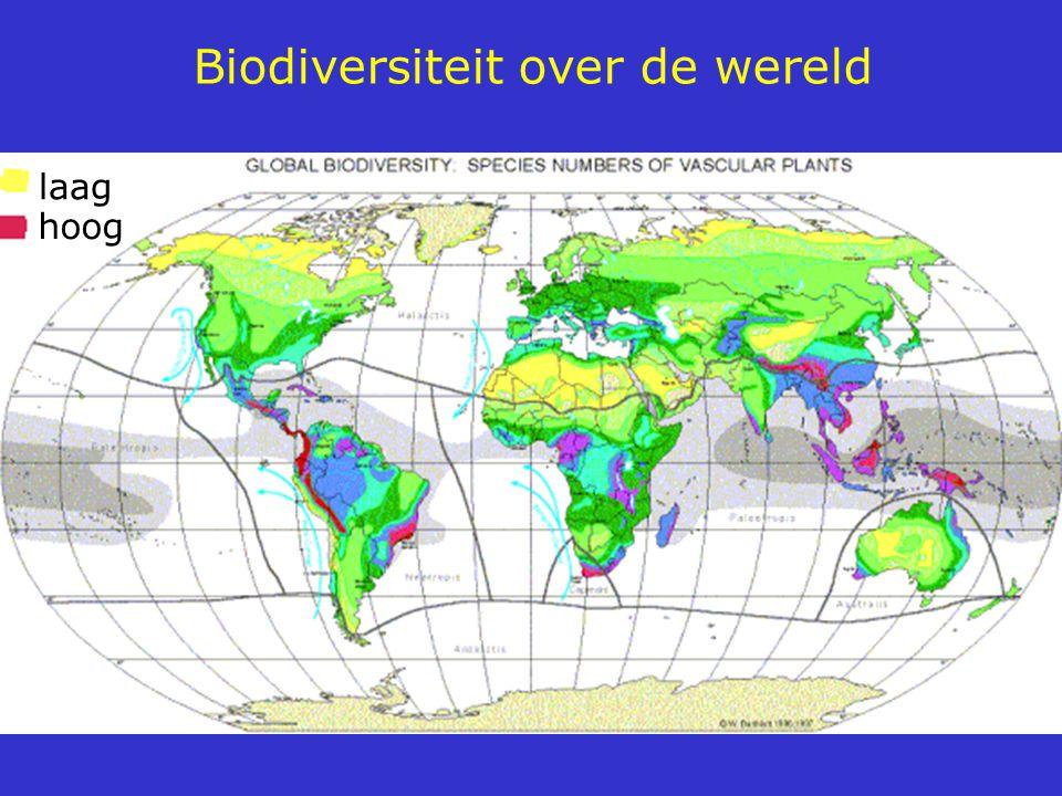 Biodiversiteit over de wereld