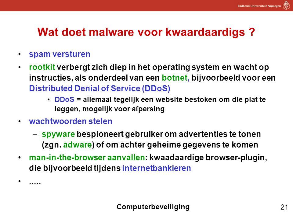 Wat doet malware voor kwaardaardigs