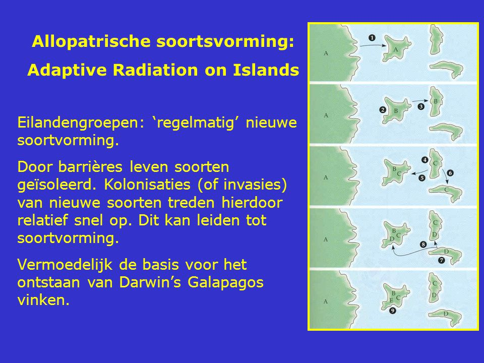 Allopatrische soortsvorming: Adaptive Radiation on Islands