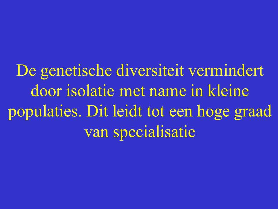 De genetische diversiteit vermindert door isolatie met name in kleine populaties.