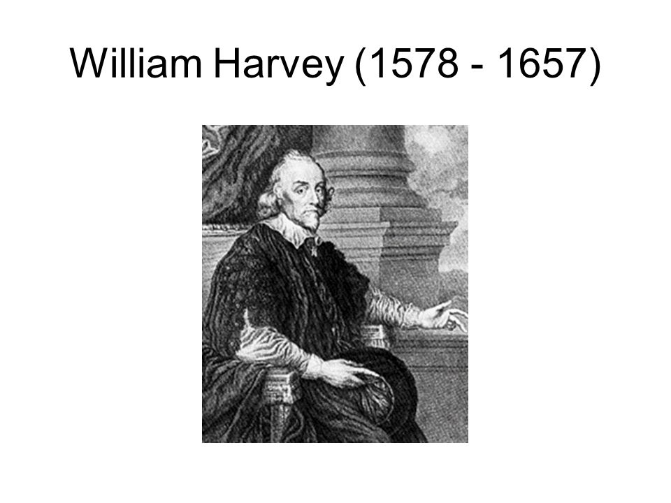 William Harvey (1578 - 1657)