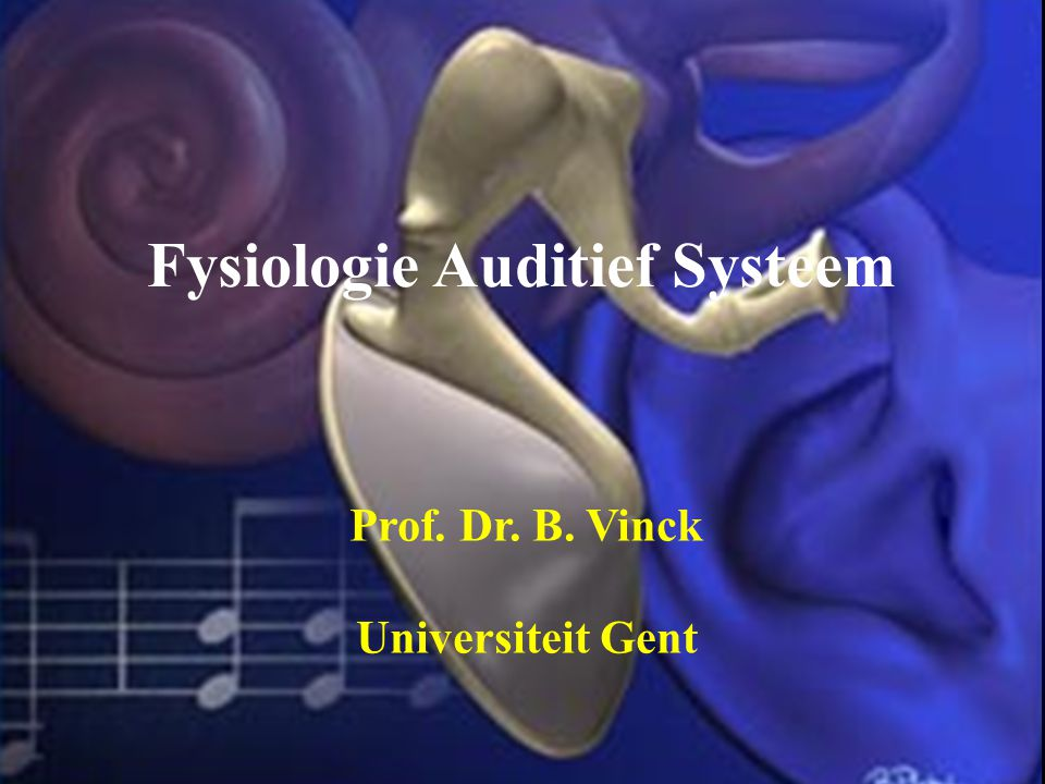Fysiologie Auditief Systeem