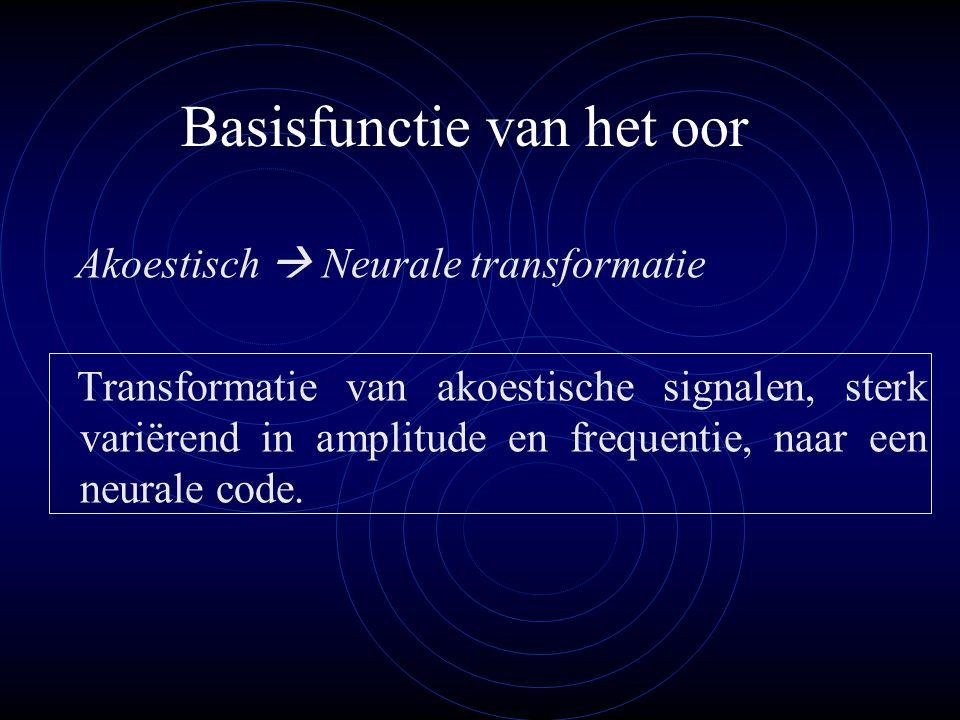 Basisfunctie van het oor