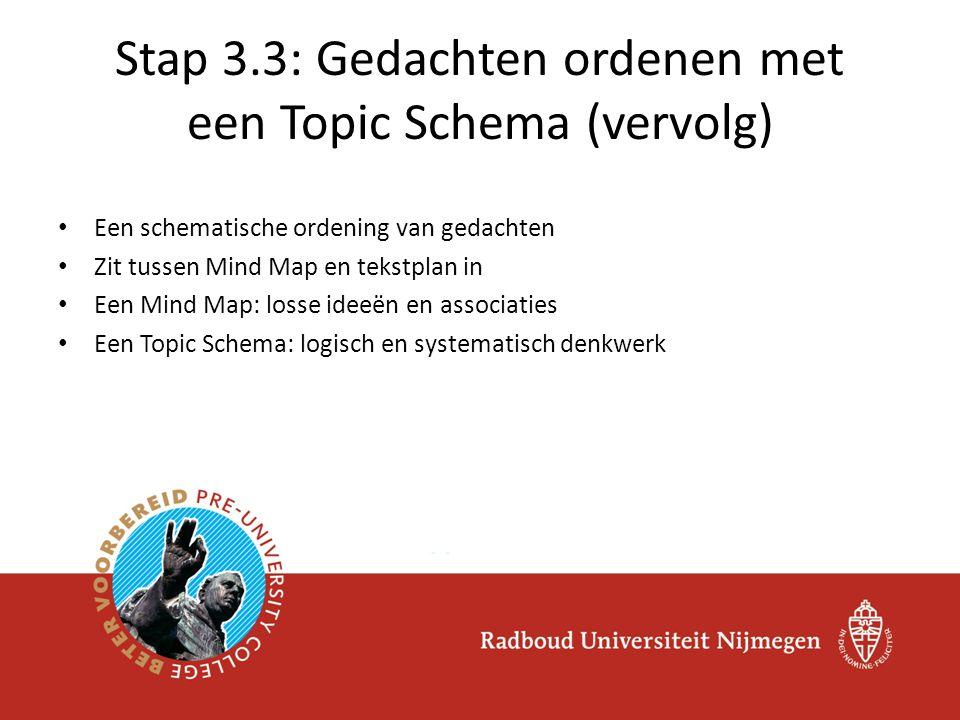 Stap 3.3: Gedachten ordenen met een Topic Schema (vervolg)