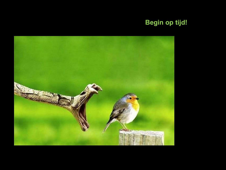Begin op tijd!