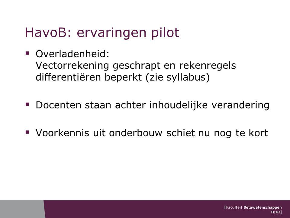 HavoB: ervaringen pilot