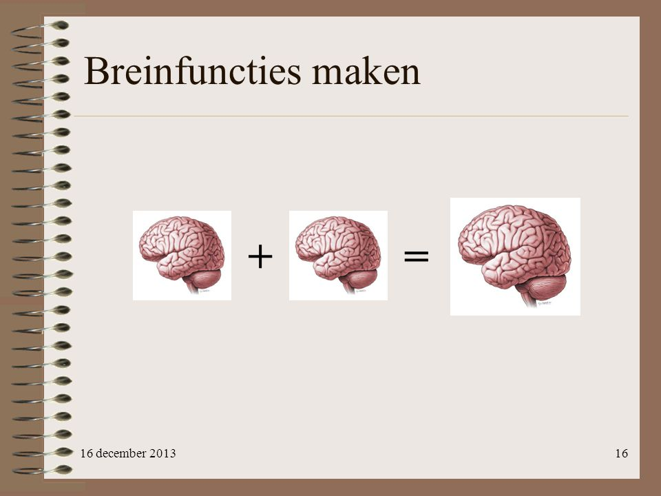 Breinfuncties maken + = 16 december 2013