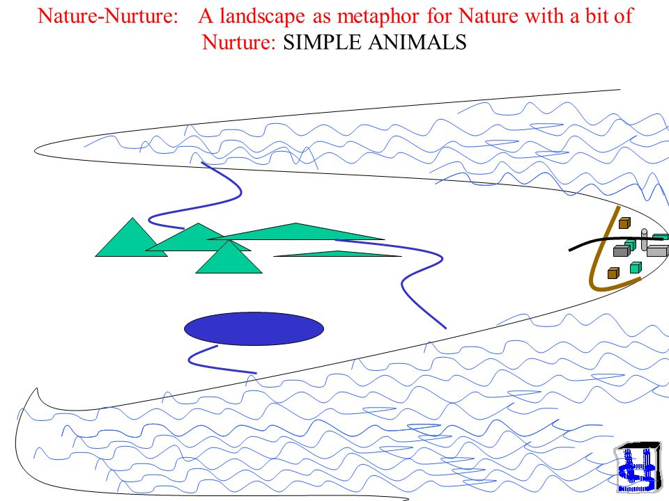 Nature-Nurture: A landscape as metaphor for Nature with a bit of Nurture: SIMPLE ANIMALS