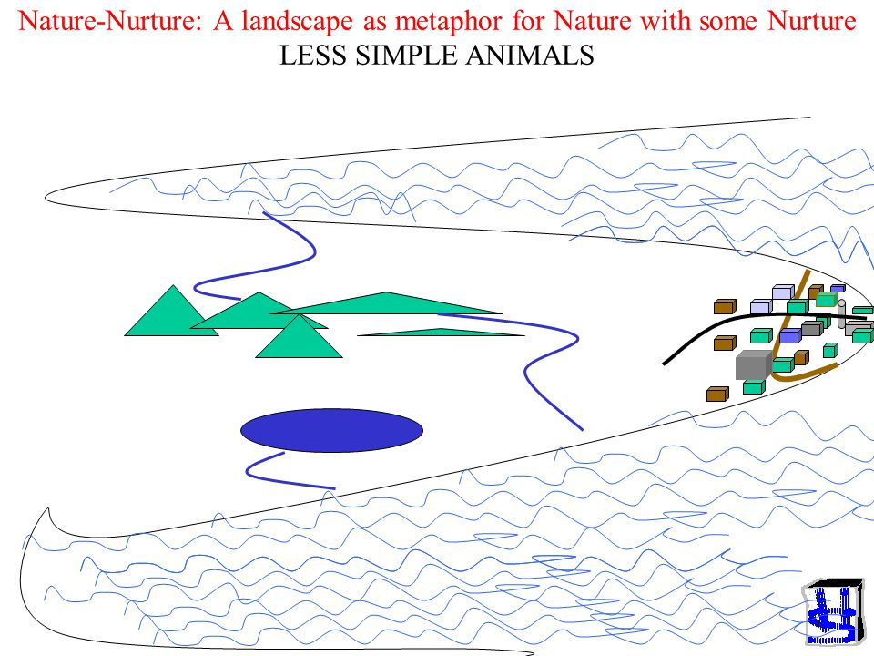 Nature-Nurture: A landscape as metaphor for Nature with some Nurture LESS SIMPLE ANIMALS