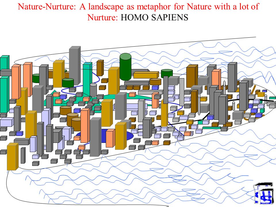 Nature-Nurture: A landscape as metaphor for Nature with a lot of Nurture: HOMO SAPIENS