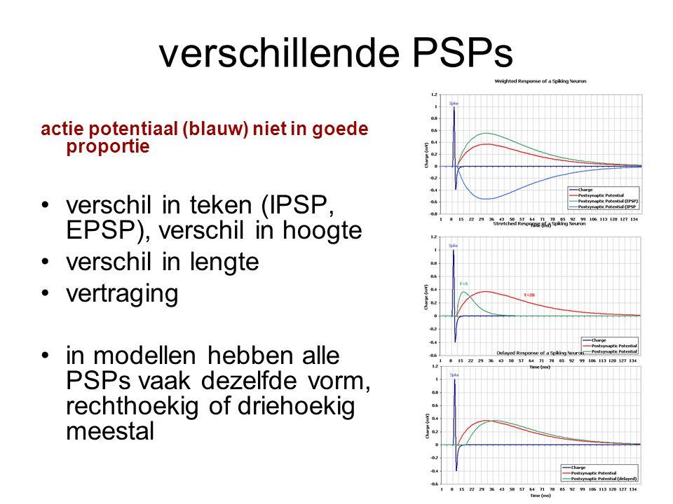 verschillende PSPs verschil in teken (IPSP, EPSP), verschil in hoogte