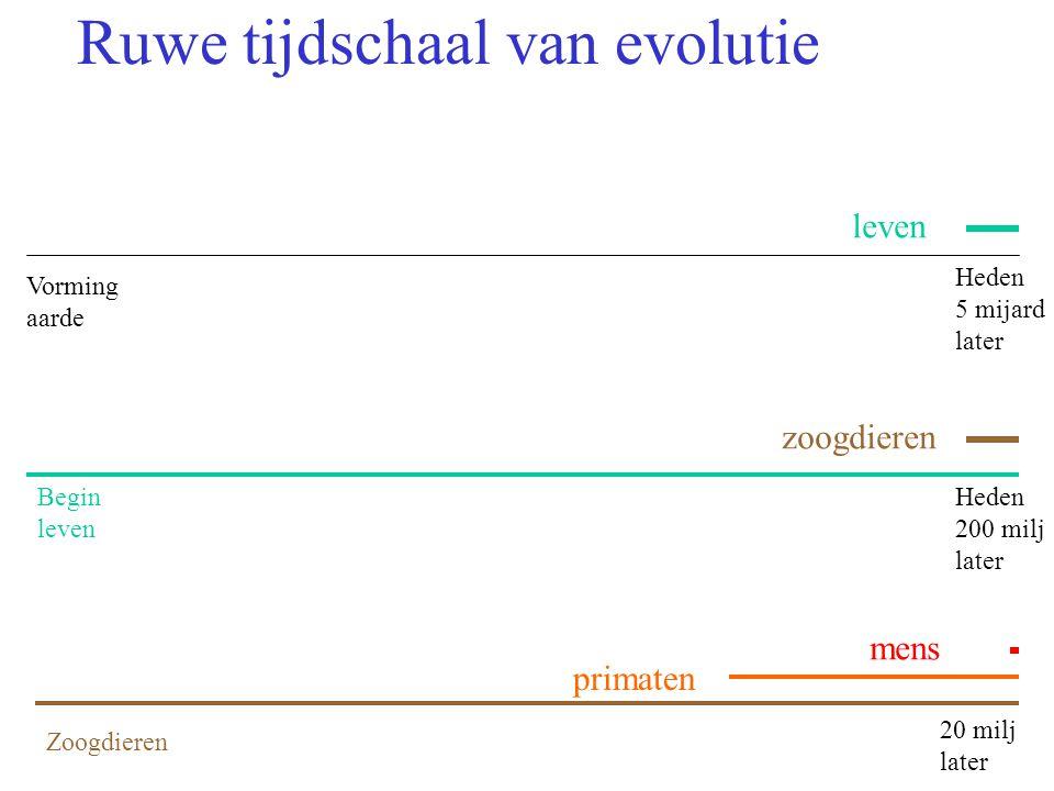 Ruwe tijdschaal van evolutie