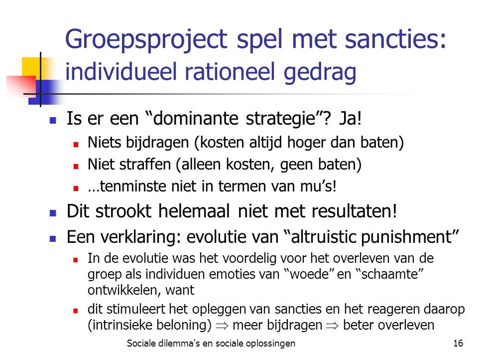 Groepsproject spel met sancties: individueel rationeel gedrag