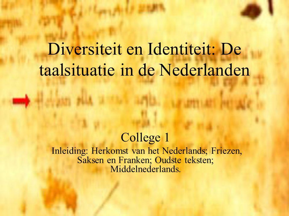 Diversiteit en Identiteit: De taalsituatie in de Nederlanden