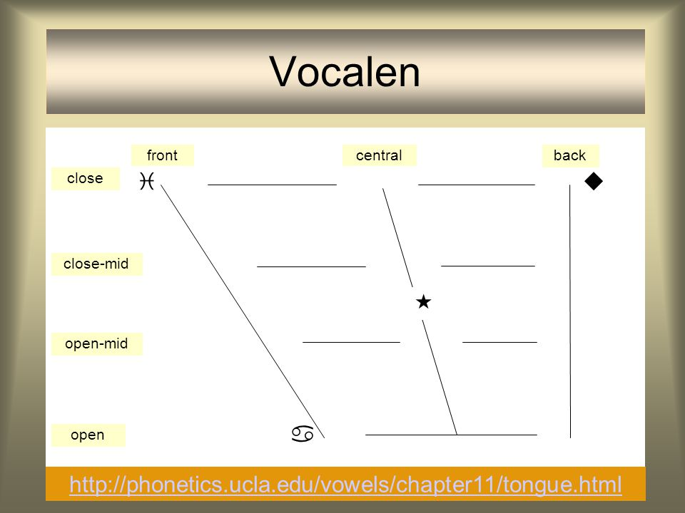 Vocalen     http://phonetics.ucla.edu/vowels/chapter11/tongue.html