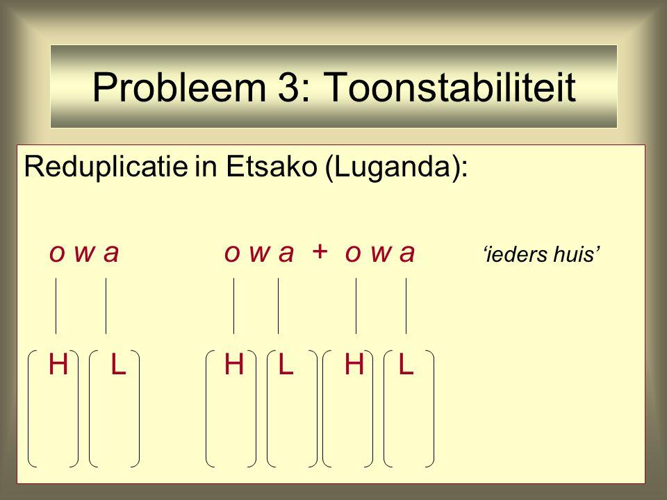 Probleem 3: Toonstabiliteit