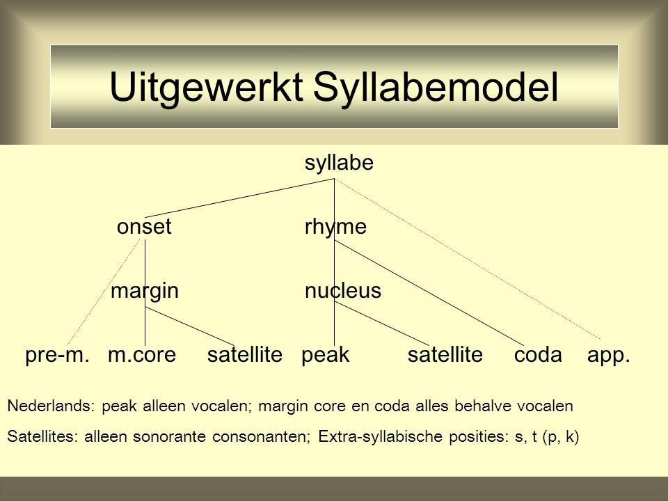 Uitgewerkt Syllabemodel