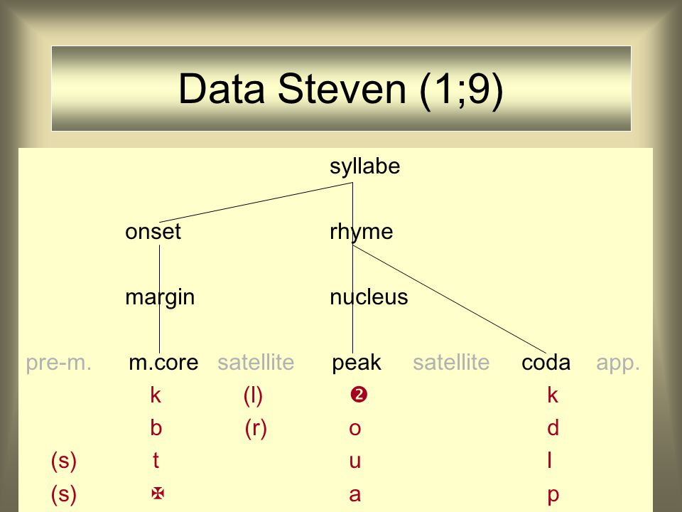 Data Steven (1;9) syllabe onset rhyme margin nucleus