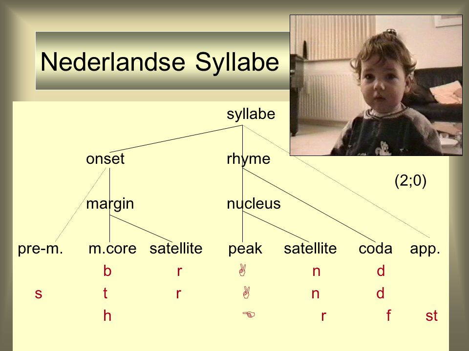 Nederlandse Syllabe syllabe onset rhyme margin nucleus