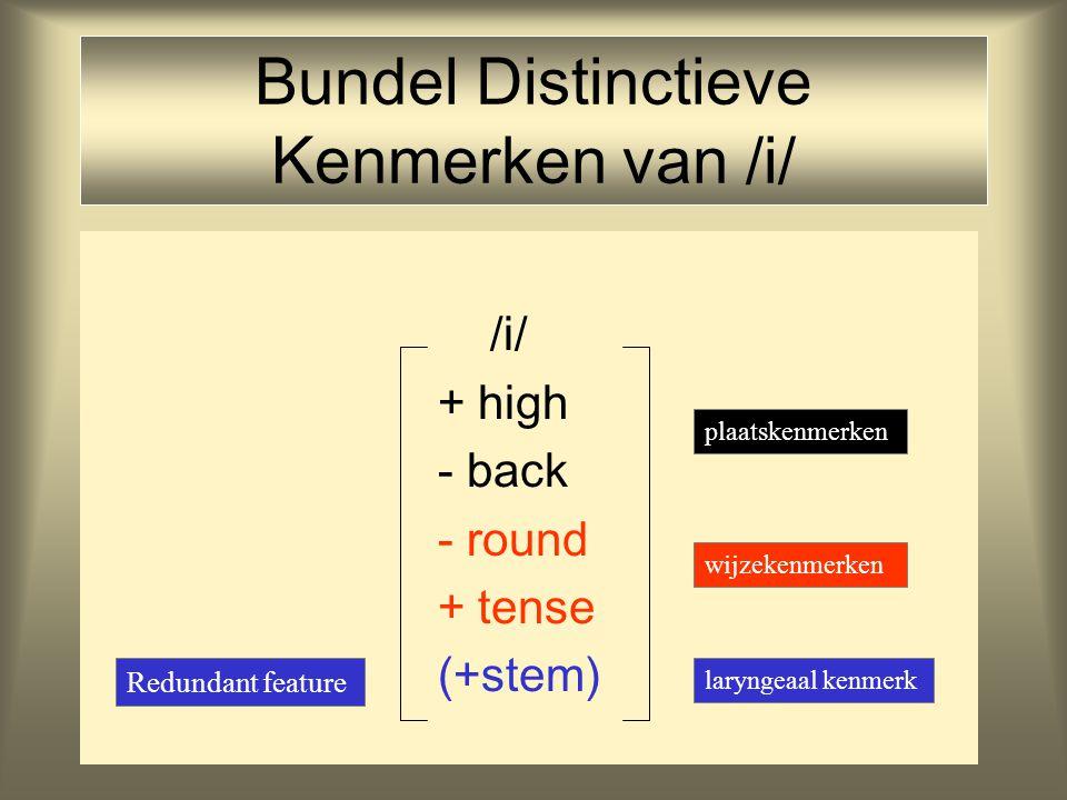 Bundel Distinctieve Kenmerken van /i/